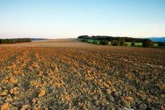 Feld im Herbst Stockfotografie