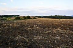 Feld im Herbst Stockfotos