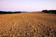 Feld im Herbst Lizenzfreies Stockbild