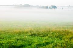 Feld im Nebel Lizenzfreies Stockbild