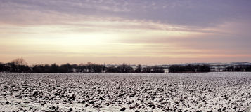 Feld im Winter Lizenzfreies Stockbild