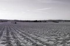 Feld im Winter Stockbilder