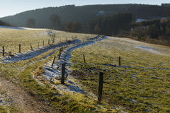 Feld im Winter Stockfoto