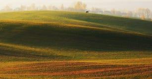 Feld malerisches Herbstfeld Stockbilder