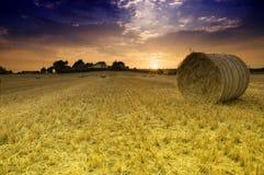 Feld mit Ballen Stroh lizenzfreie stockfotografie