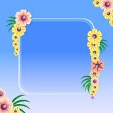 Feld mit Blumen Stockfoto