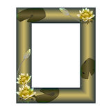 Feld mit Blumen einer Seerose Lizenzfreies Stockbild