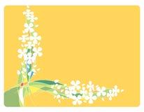 Feld mit Blumen und Zeilen Lizenzfreies Stockbild