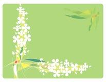Feld mit Blumen und Zeilen Lizenzfreie Stockfotos