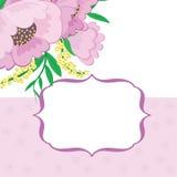 Feld mit Blumenhintergrund Lizenzfreies Stockfoto