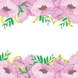 Feld mit Blumenhintergrund Stockbild