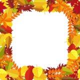 Feld mit bunten Blättern des Herbstes Herbstsaisongrußkarte, Plakat, Flieger , generischer Fallhintergrund usw. stock abbildung