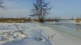 Feld mit dem Gras weg eingefroren und Schnee das Baumwinter-Landschaft-steadicam Russlands draußen tote draußen stock footage