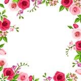 Feld mit den roten und rosa Rosen Auch im corel abgehobenen Betrag lizenzfreie abbildung