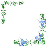 Feld mit Eckverzierungen des grünen Laubs und wilden blauen Blumen auf einem weißen Hintergrund watercolor Lizenzfreie Stockfotos