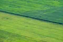 Feld mit einem bird& x27; Saugenansichtlandwirtschaft Stockfotografie