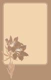 Feld mit einer Lilie und Platz für Text Stockbilder