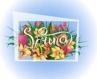 Feld mit Frühlingshintergrund mit Blumen und Gras Lizenzfreies Stockbild