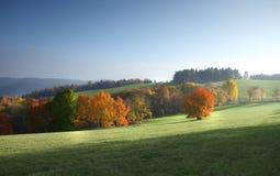Feld mit gehauenem Mais und Wolken Lizenzfreie Stockfotografie