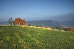 Feld mit gehauenem Mais und Wolken Lizenzfreie Stockbilder