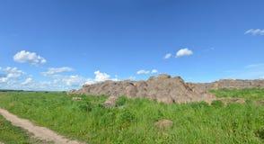 Feld mit gelbem Löwenzahn und blauem Himmel Stockfotografie