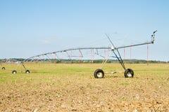 Feld mit Gelenksprinkleranlagebewässerung Stockfotos