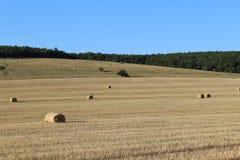 Feld mit geschnittenen Gras- und Heuballen rollte stockbild