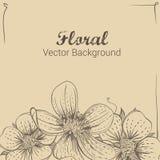 Feld mit Hand gezeichneten Blumen Lizenzfreies Stockfoto