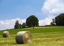 Feld mit haybales Lizenzfreie Stockbilder