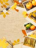 Feld mit Herbstlaub und Fotos Lizenzfreies Stockfoto