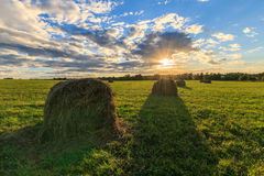 Feld mit Heuschobern bei Sonnenuntergang im Frühherbst Stockfotografie