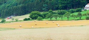 Feld mit Heuschobern in den Alpen Lizenzfreie Stockfotografie