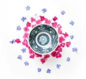 Feld mit Hortensieblume und blaue Bleiwurz blühen Stockfoto