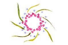 Feld mit Hortensieblume und blaue Bleiwurz blühen an lokalisiert Stockfoto