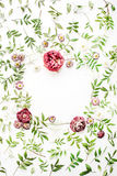 Feld mit rosa Rosen, Niederlassungen, Blättern und den Blumenblättern Lizenzfreie Stockfotografie