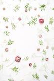 Feld mit rosa Rosen, Niederlassungen, Blättern und den Blumenblättern Stockbild