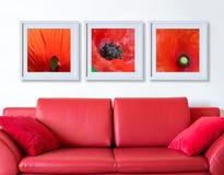 Feld mit roter Mohnblumenflora über der roten Couch Stockfotografie