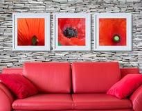Feld mit roter Mohnblumenflora über der roten Couch Stockbild