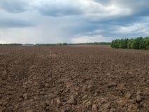 Feld mit Schwarzerde Stockfoto