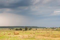 Feld mit Stroh rollt an einem Sommertag Lizenzfreie Stockbilder