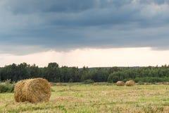 Feld mit Stroh rollt an einem Sommertag Lizenzfreie Stockfotografie