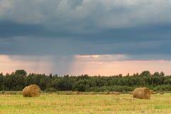 Feld mit Stroh rollt an einem Sommertag Stockfoto