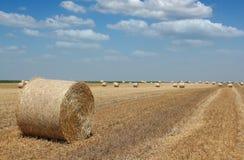 Feld mit Strohballen Lizenzfreie Stockfotografie