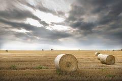 Feld mit Strohballen Lizenzfreie Stockfotos