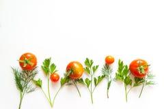 Feld mit Tomate und Kräutern Stockfotografie