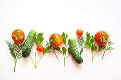 Feld mit Tomate und Kräutern Stockbild