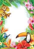 Feld mit tropischen Blumen und Tukan Stockbild