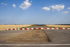 Feld mit Weizen Stockfotografie