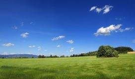 Feld mit Wolken Lizenzfreies Stockfoto