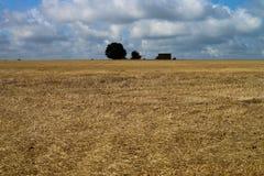 Feld nach Ernte Stockfotos